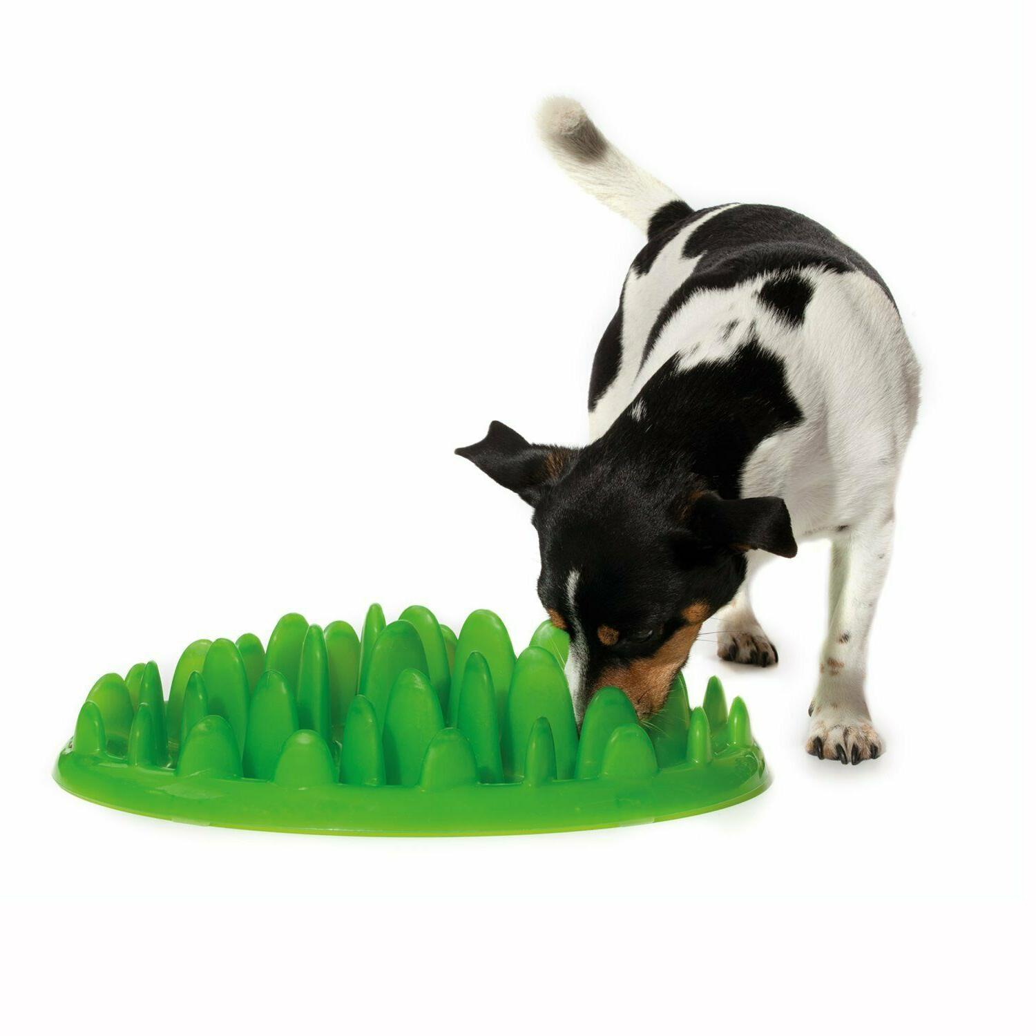 """Northmate Green Interactive Feeder for Dogs 11"""" x"""