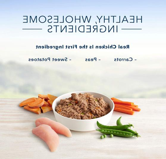 Homestyle Recipe Natural Wet Dog Can