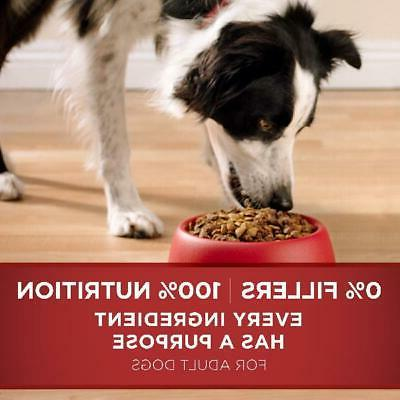 Purina ONE Dry &