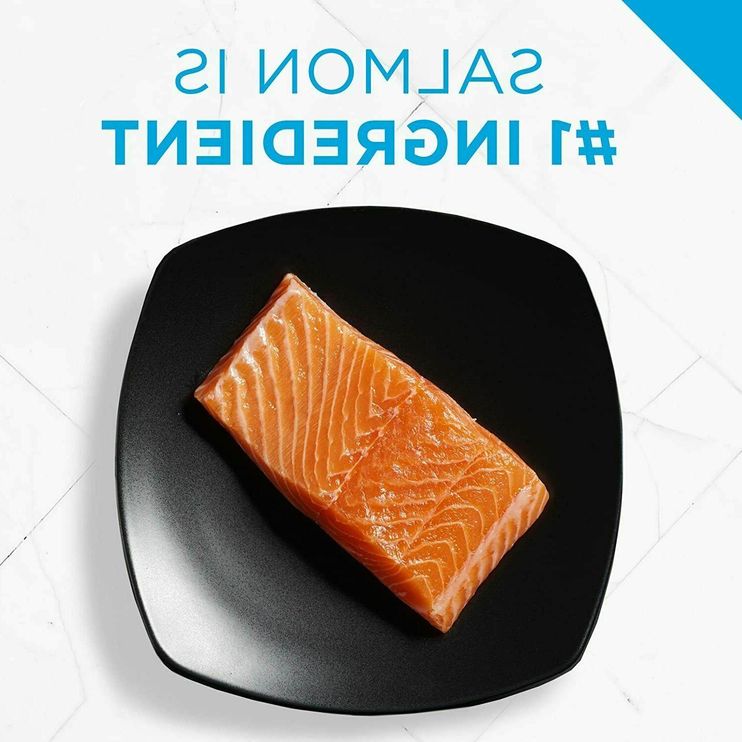 Purina Skin and Stomach Dry lb Salmon