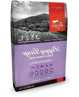 puppy large breed dog food